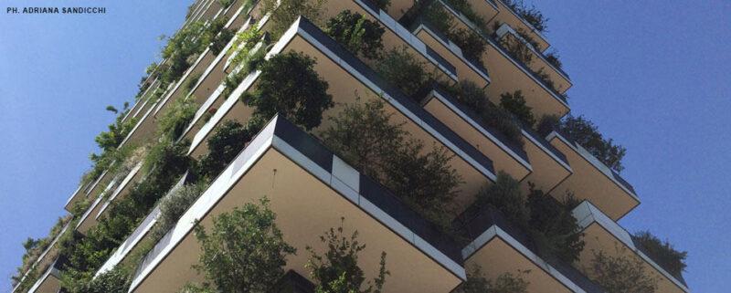 urban vision and architectural design
