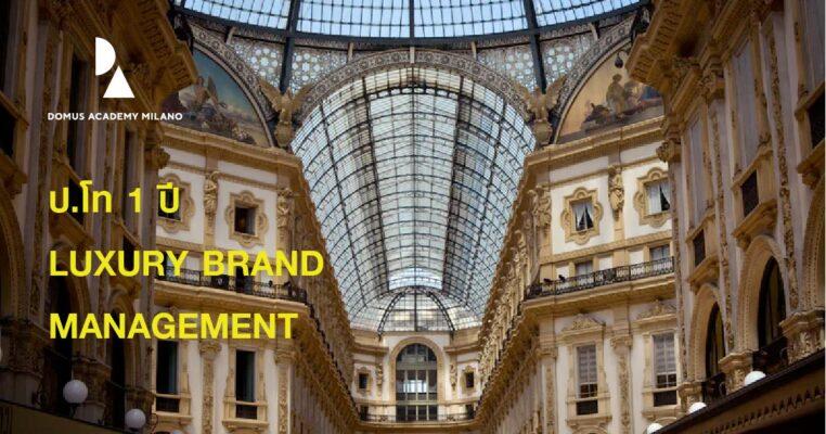 luxury brand management domus academy